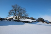 Muker Village in winter (55)