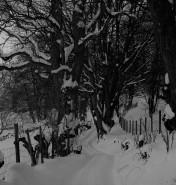 Muker Village in winter (72)