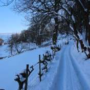 Muker Village in winter (74)
