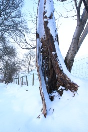 Muker Village in winter (77)