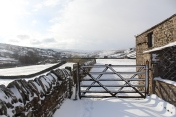Muker Village in winter (85)